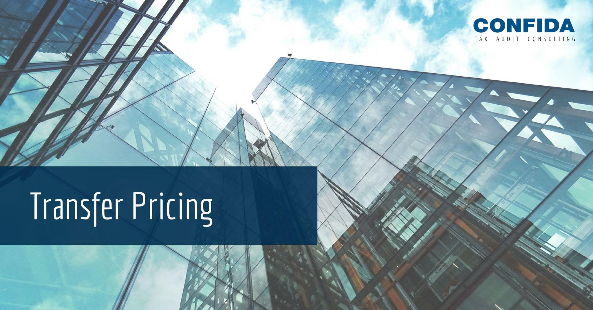 What Does Transfer Pricing Represent?
